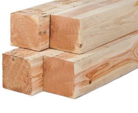 Lariks/Douglas palen onbehandeld (vers hout) 20x20x400 cm