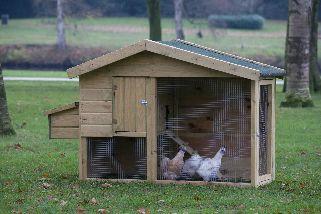 Kippenverblijf Barnevelder